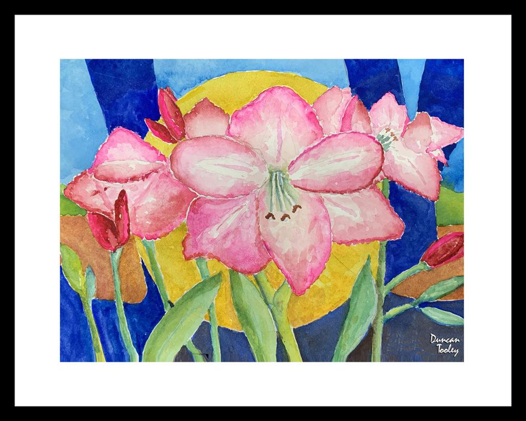 Apple Blossom Amaryllis Joy by Duncan Tooley