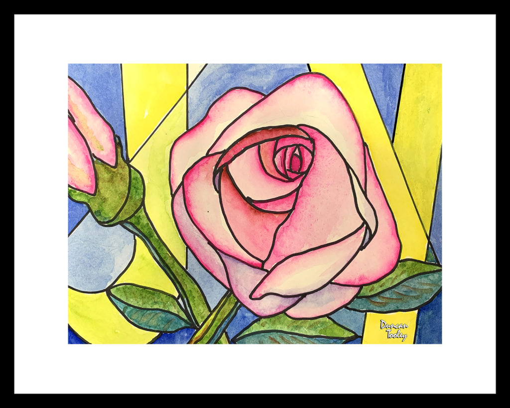 Pink Rose Joy bt Duncan Tooley