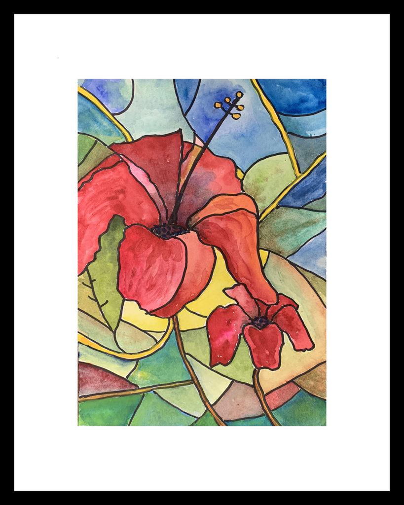 Ted hibiscvus Joy by Duncan Tooley