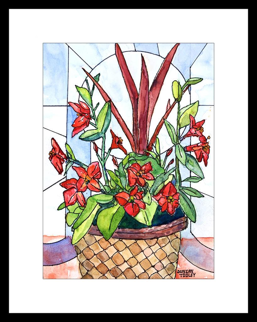 terrace-basket-flower-joy by Duncan Tooley